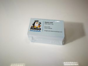 Vizitke - Pingo rođendaonica