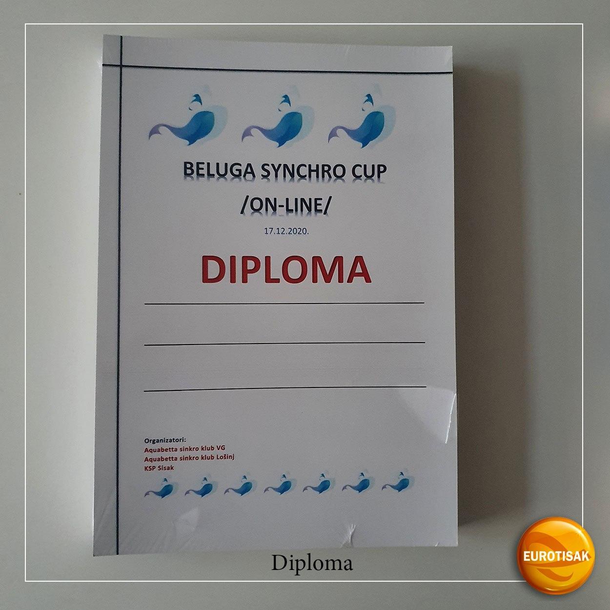 Izrada diploma