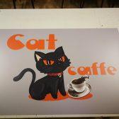 Kaširanje na plexi - Cat caffe